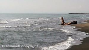 """Il mare e sullo sfondo uno """"strano"""" ciocco di legno"""
