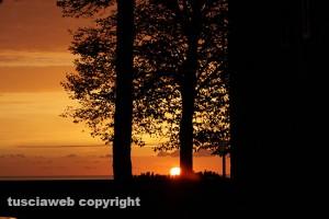 Tarquinia - Tramonto tra gli alberi