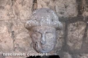 Viterbo - Museo civico - Sarcofago etrusco ricoperto di escrementi di piccione