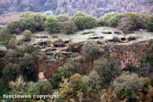 Bomarzo - La riserva naturale di Montecasoli