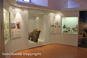Il Museo nazionale Etrusco alla rocca Albornoz - La sezione di Blera