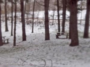 Il parco jogging sulla Cimina