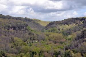 La valle del Treja
