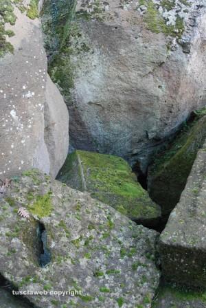 Anno degli etruschi - Vetralla - Alla scoperta del tempietto di Demetra