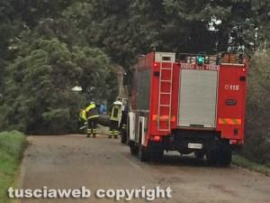 Maltempo - Un intervento dei vigili del fuoco