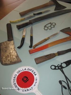 Operazione Toro Loco - Le armi sequestrate ai Medde nel 2009