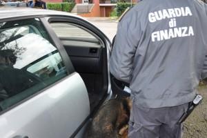 La guardia di finanza in azione