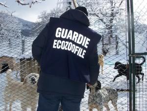 Guardie ecozoofile