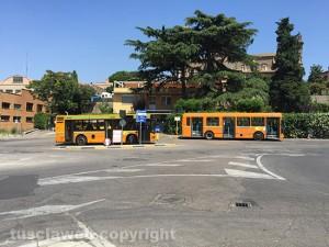 I bus della Francigena