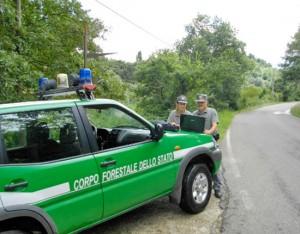 Forestale in azione