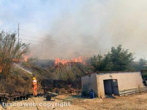 Montalto di Castro - Nuovo incendio vicino l'Aurelia