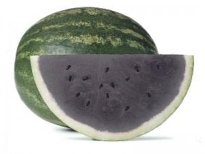 Il black watermelon o cocomero cinerino
