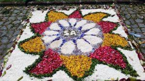 Vignanello - Festa del fiore