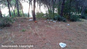 Montalto Marina - Pineta piena di rifiuti