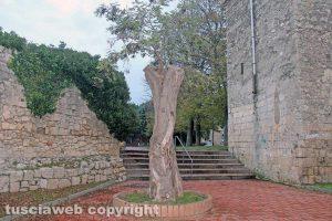Tarquinia - Il giardino della Ripa