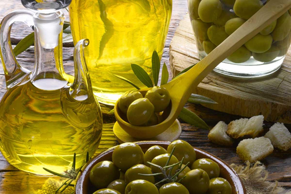 Risultati immagini per sagra olivo canino