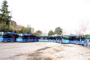 Viterbo - I nuovi mezzi Cotral schierati al Riello