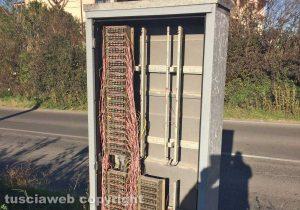 Tuscania - Cabina di cablaggi telefonici aperta in località Perazzetta