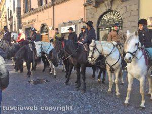 Viterbo - La benedizione degli animali in piazza del Comune