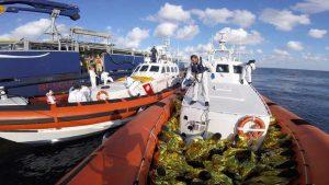 Il personale della motovedetta della Guardia Costiera CP 305 in azione