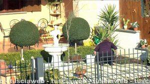 Tuscania - La presunta falsa cieca cura il giardino