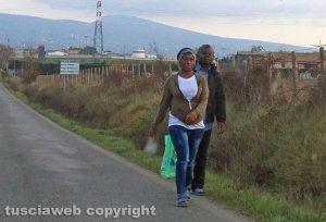 Viterbo - Profughi arrivano al campo dell'ex fiera