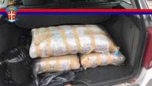 Viterbo - I 38 chili di marijuana sequestrati dai carabinieri