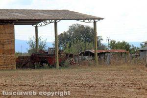 Tuscania – Omicidio Angelo Gianlorenzo – Località San Savino
