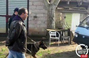 Tuscania - Assassinato 83enne - Chi l'ha visto? - Carabinieri in località Castellaccio -