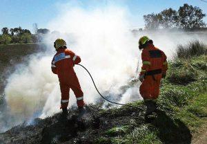 Tarquinia - Incendio sulla Litoranea - Volontari Aeopc al lavoro
