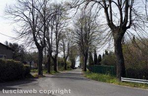 Bolsena - La strada in cui si trova la casa del ragazzo