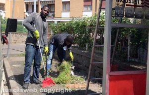 I due rifugiati ripuliscono via Alessandro Volta dalle erbacce