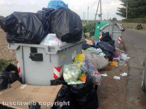 Viterbo - I rifiuti abbandonati in strada Montarone