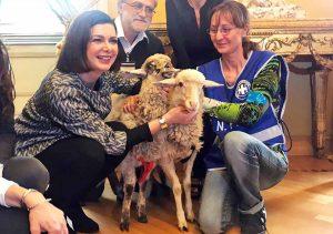 Laura Boldini adotta due agnellini
