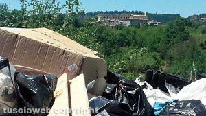 Il panorama di Roccalvecce dietro la discarica