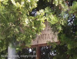 Viterbo - L'indicazione di via Monte Amiata scolorita e coperta dai rami