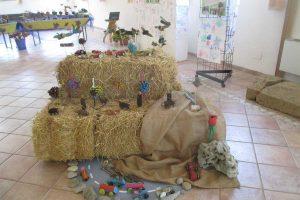 """Capodimonte - La mostra """"Creiamo con la natura"""""""