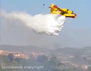 Viterbo - Vastissimo incendio a Sant'Angelo di Roccalvecce - L'intervento dei vigili del fuoco
