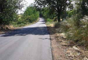 Viterbo - Ferento - La strada asfaltata