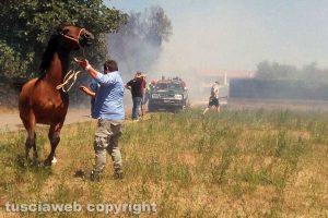 Tuscania - Incendio nel quartiere ex Gescal