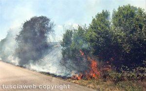 Un incendio a bordo strada
