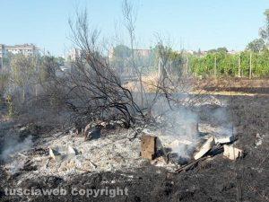 Viterbo - Incendio vicino strada Salamaro