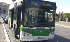 Viterbo - Bus Francigena