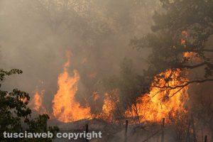 Estate rovente, incendi in tutta la provincia