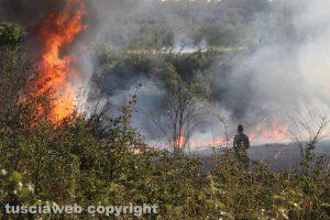 Viterbo - Incendio in località le Masse