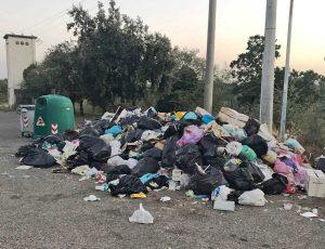 Viterbo - Cumulo di rifiuti a S. Angelo