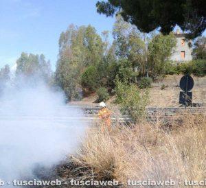Montalto di Castro - L'incendio a ridosso dell'Aurelia