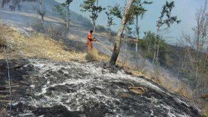 Volontari Aeopc impegnati negli incendi