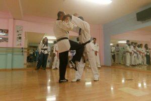 Sport - Il Taekwondo olimpic Vetralla