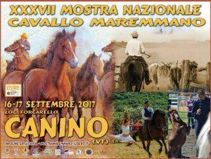 Canino - Mostra nazionale del cavallo Maremmano